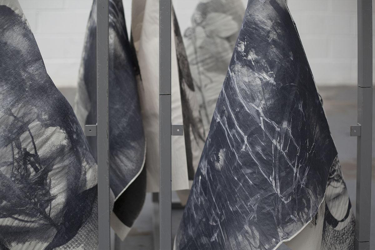 Flora McCallica (installation view)